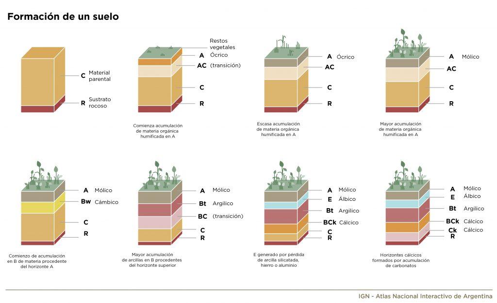 Ilustración gráfica de formación de un suelo