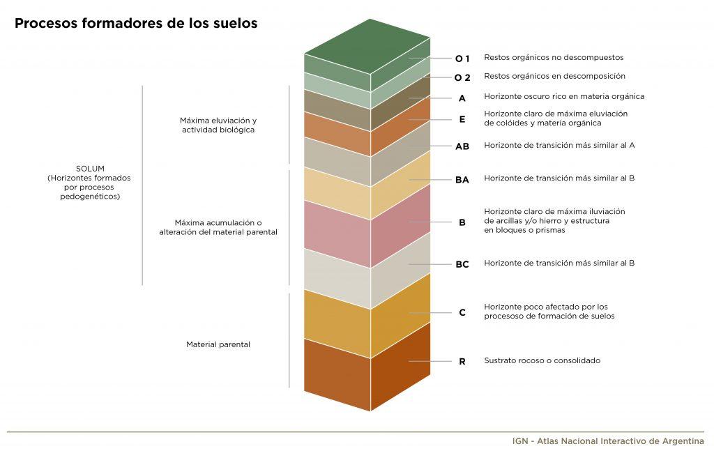 Ilustración gráfica de procesos formadores de los suelos_2