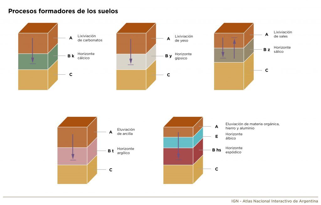 Ilustración gráfica de procesos formadores de los suelos