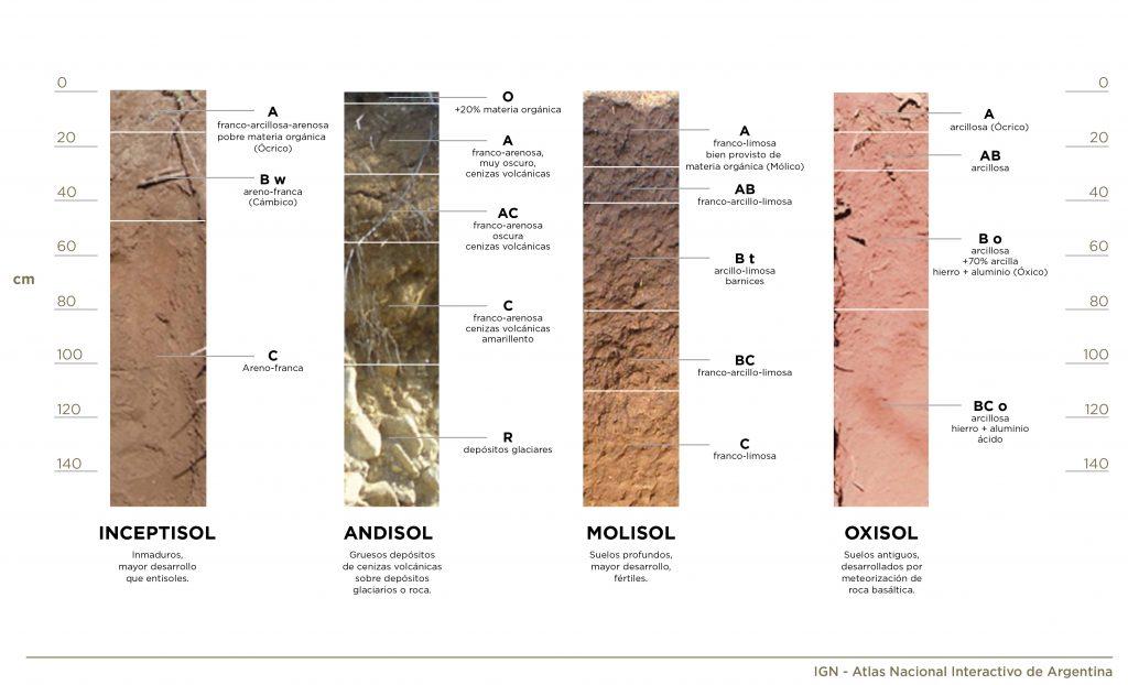 Ilustración gráfica de capas de un suelo
